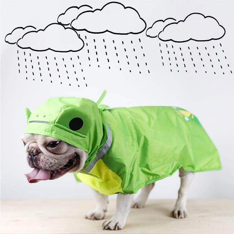 Raincoat For Dog