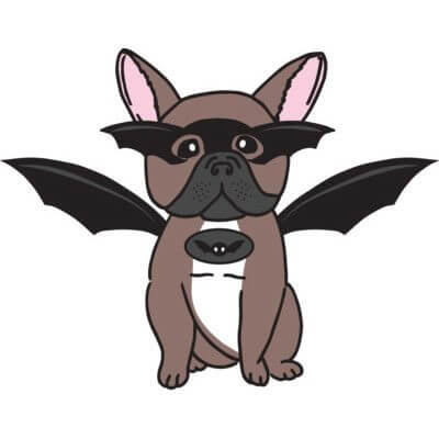 BATPIG French Bulldog