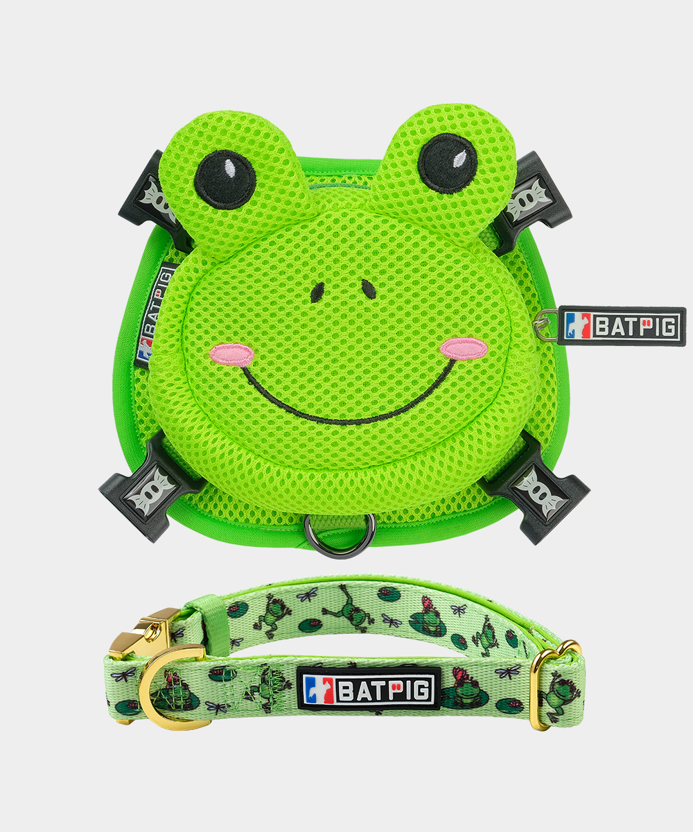 BATPIG Backpack Harness Froggy Dog with Collar