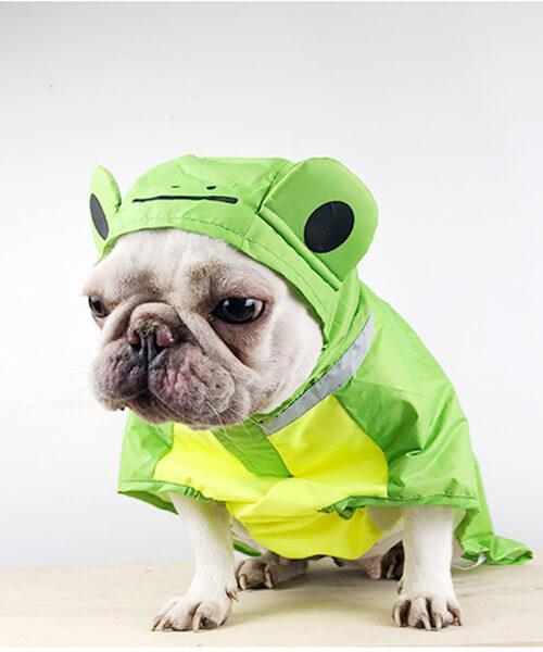 Adorable Froggy Raincoat
