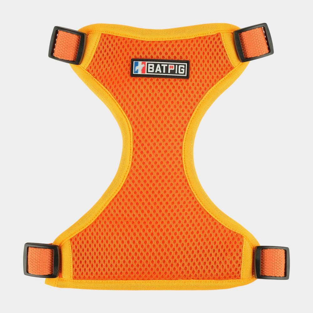 BATPIG Backpack Harness Brave Lion Orange