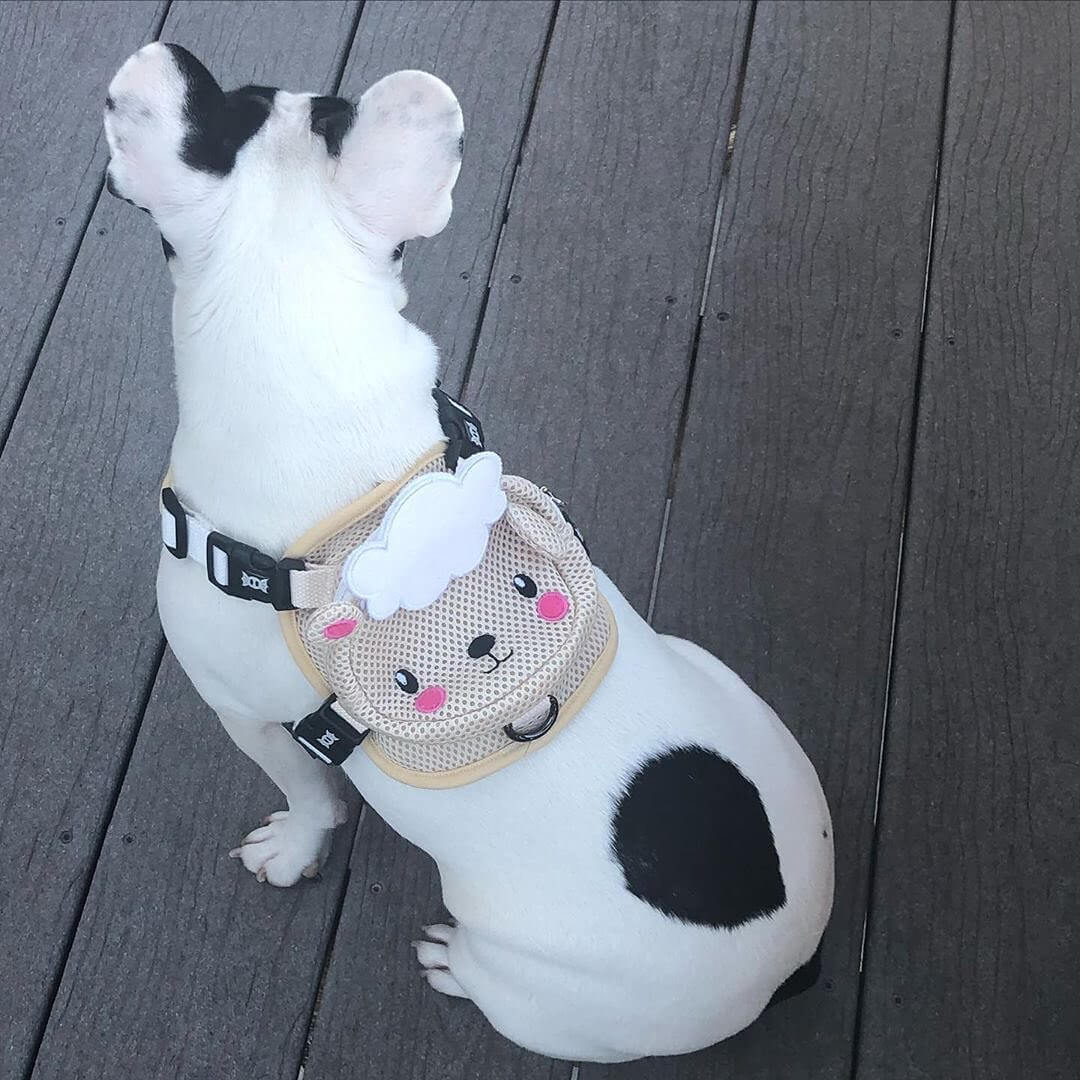 BATPIG Backpack Harness Lamb - Customer Photo 2