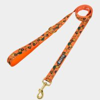 BATPIG Comfort Leash Brave Lion